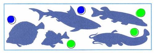 Кто такие рыбы? - Плешаков 1 класс 1 часть. Рабочая тетрадь