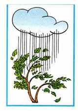 Почему идёт дождь и дует ветер? - Плешаков 1 класс 2 часть. Рабочая тетрадь
