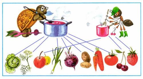 Почему нужно есть много овощей и фруктов?