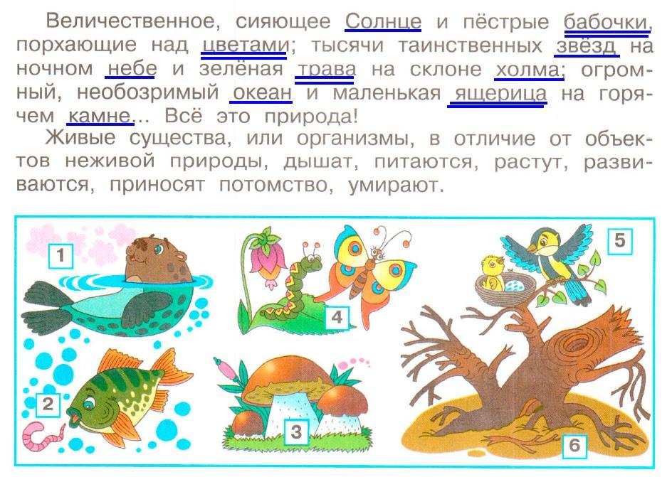 Природа - Плешаков 3 класс 1 часть. Рабочая тетрадь