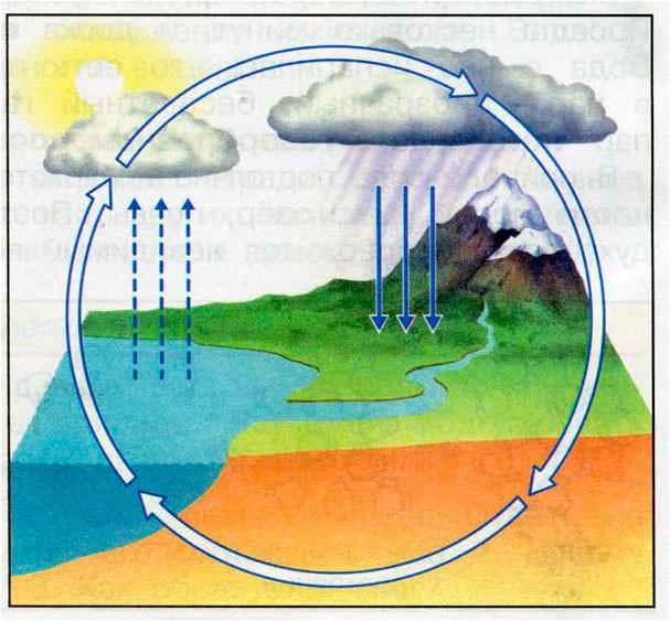 Превращения и круговорот воды - Плешаков 3 класс 1 часть. Рабочая тетрадь