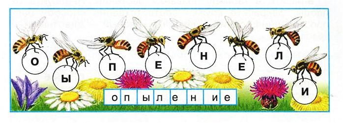 Размножение и развитие растений - Плешаков 3 класс 1 часть. Рабочая тетрадь