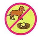 Охрана животных - Плешаков 3 класс 1 часть. Рабочая тетрадь