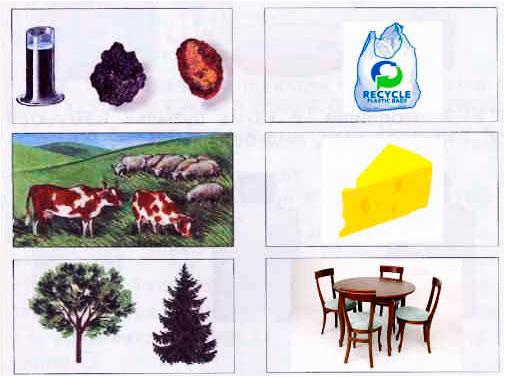 § 20.Богатства природы - Вахрушев 1 класс. Рабочая тетрадь
