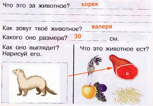 § 26. Домашние любимцы и комнатные растения - Вахрушев 1 класс. Рабочая тетрадь