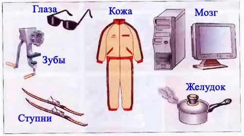 § 28. Человек - разумное существо - Вахрушев 1 класс. Рабочая тетрадь