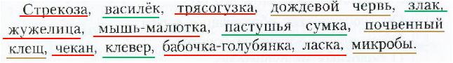 § 14. Экосистема луга - Вахрушев 3 класс 1 часть. Рабочая тетрадь