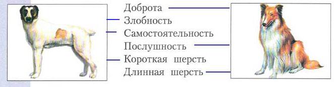 Тема 16. Рукотворная жизнь