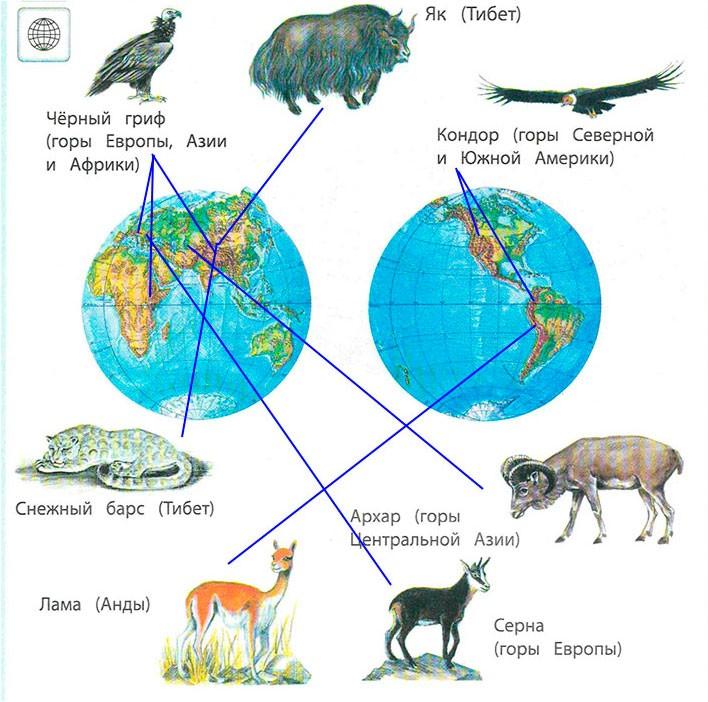 § 25. Горные экосистемы