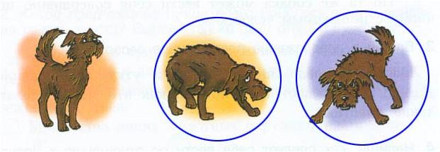 Проверяем умение понимать текст «Домашние животные». II вариант - Вахрушев 3 класс 1 часть. Рабочая тетрадь