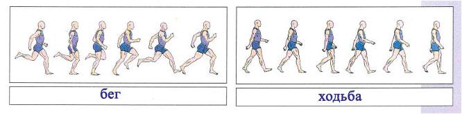 Тема 3. Как человек двигается