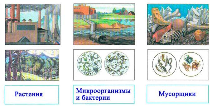 § 31. Наша маленькая планета Земля - Вахрушев 2 класс. Рабочая тетрадь