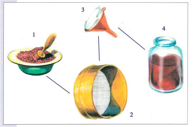 Тема 5. Как удаляются ненужные вещества