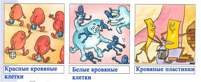Тема 8. Что такое кровь - Вахрушев 4 класс 1 часть. Рабочая тетрадь