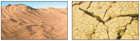 Пустыни - Плешаков 4 класс 1 часть. Учебник