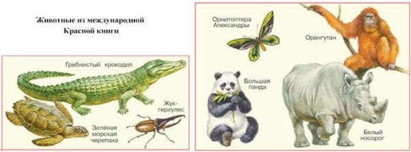 Международная Красная книга - Плешаков 4 класс 1 часть. Учебник